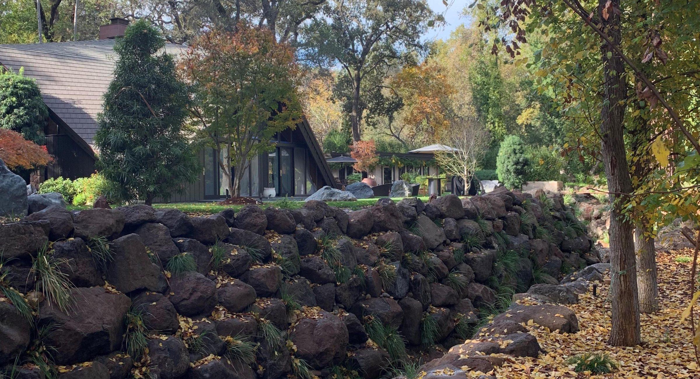 Monte Sereno Creek Restoration